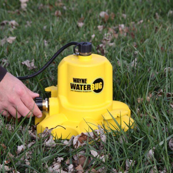 Wayne WaterBug in yard