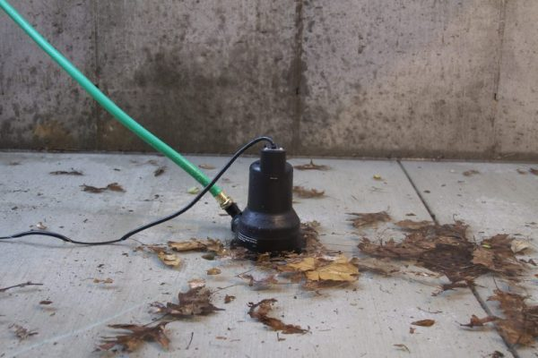 Utility Pump with leaves
